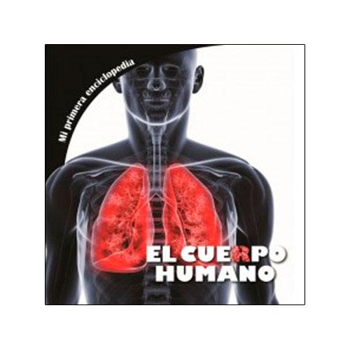 cuerpo-humano-29