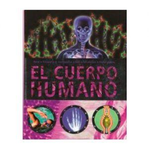 cuerpo-humano-morado