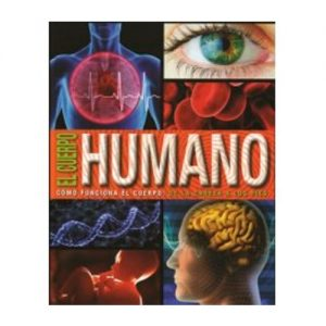 cuerpo-humano-naranja